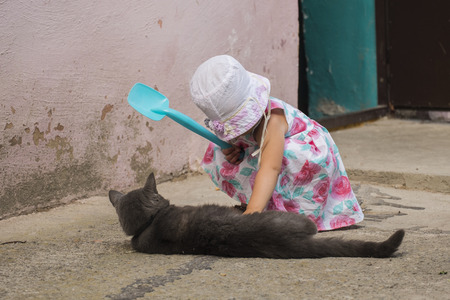 begs: Girl and cat  baby begs cat to go home with her
