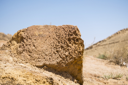 The stone is speckled with miniature grooves and holes in the Negev desert (Israel)