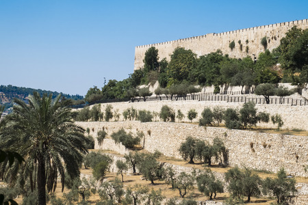 The eastern wall of the Temple Mount of the old city. Below the olive grove (Israel, Jerusalem)