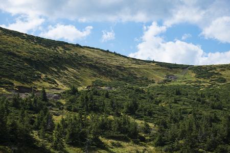Jumper between the mountain ranges (Ukraine, Carpathians, Dragobrat)