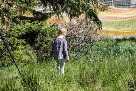 Little girl is walking in the tall grass. Going back (Ukraine, Carpathians, Dragobrat) Reklamní fotografie