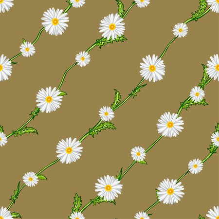 Seamless pattern from field chamomiles on stems diagonally. Flowers, stems and background are separated. Illustration