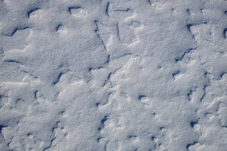 Surface of the snow cover of the earth blown by the winds Stock Photo