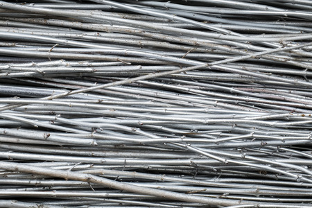 Silvery densely folded branches of trees