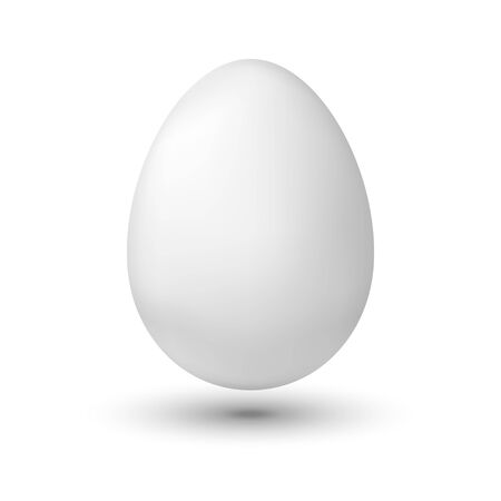 White chicken egg on white background