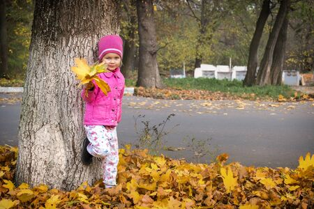 Little girl stands near the tree with a bouquet of maple leaves