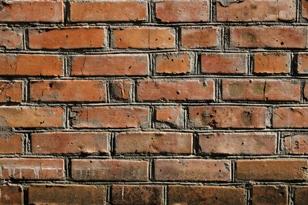 Red brick wall with jointing