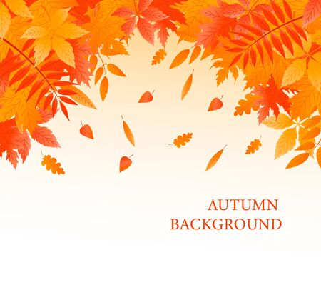 Autumn background with fallen leaves. Vector banner Ilustração