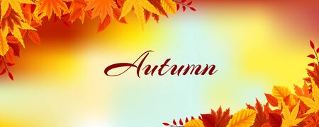 Autumn leaves autumn landscape background can be used for poster, banner, flyer, invitation, website or greeting card. Çizim
