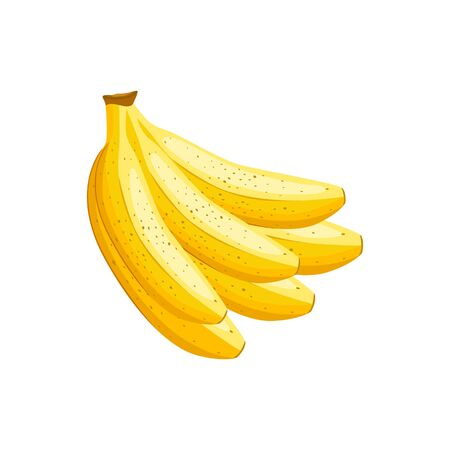 Banana vector illustration isolated on white background.