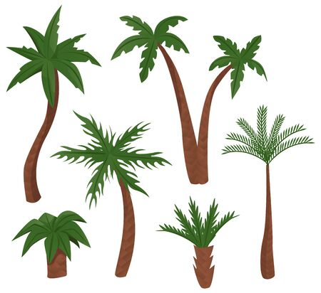 Set of palm trees. Vector illustration Illusztráció