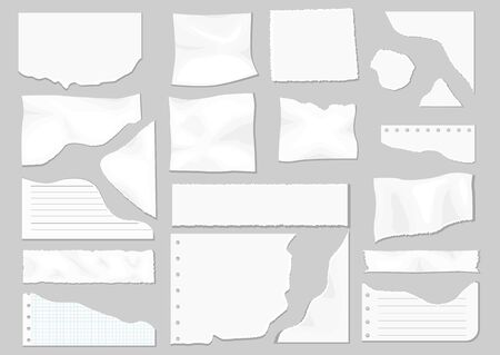 Paper scraps. Ripped paper, wrinkled paper, torn sheets, notebook paper and sheet of recording paper. Page texture, textured sheet of notes or notepad. Vector illustration Ilustrace