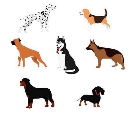 Cartoon dog set. Dogs eat pet food jumping wiggle sleeping running and barking brown happy cute animal poses. Vector illustration Vector Illustratie