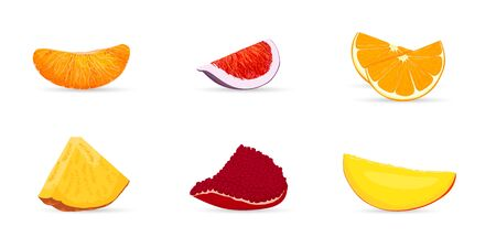 Pieces of fruit. Pieces orange, figs, mango, pamegranate, pineapple. Vector illustration berries and fruits in flat style.