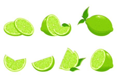 Collection of fresh limes. Designed for logos and web sites. Lemon with slices of green lemon. Fresh limes with leaves.