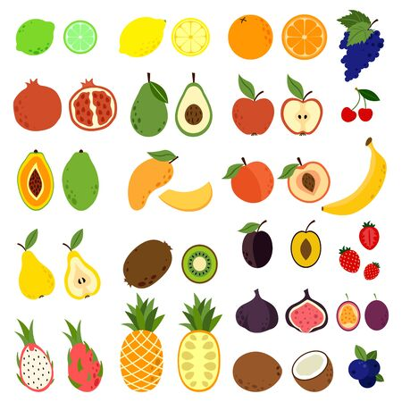 Doodle fruits. Natural tropical fruit, doodles citrus orange and vitamin lemon. Exotic Tropical organic fruit, delicious kitchen food