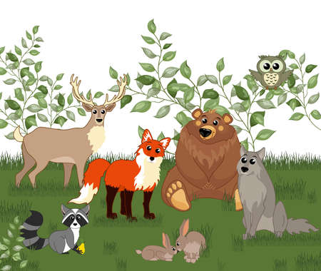Cute woodland forest animals. Bear, fox, rabbit, wolf, deer, raccoo, owl. Great for baby shower and kids design  イラスト・ベクター素材