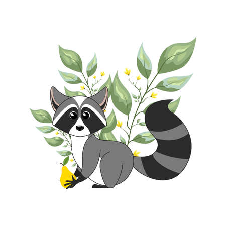 Cute woodland forest animals raccoon. Vector illustration isolated on white background.