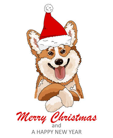 Cute doodle corgi for Merry christmas.  Funny animals with Santa hat.