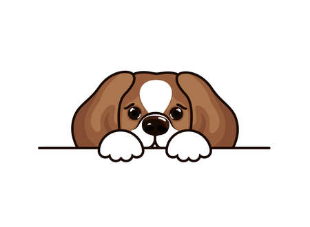Cute beagle icon, small hunting dog with white and brown fur.