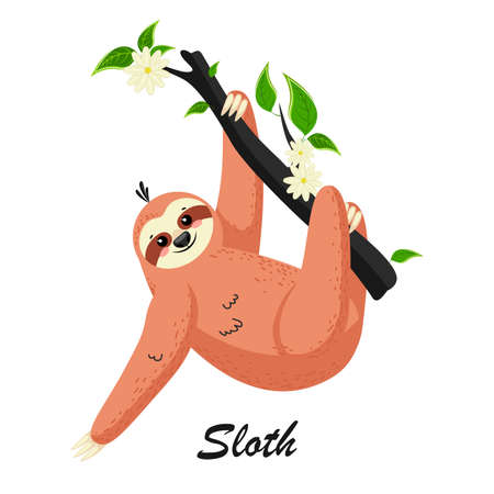 Cute cartoon sloth in a rain forest on a tree branch. Can be used for cards, flyers, posters, t-shirts. Фото со стока - 158873144