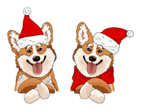 Cute doodle corgi for christmas day. Xmas sketch drawing. Winter holiday greeting cards. Design print