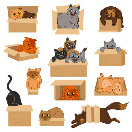 Cats in cardboard transportation boxes cartoon vector illustration. Set of badges with cats sitting in cardboard boxes.