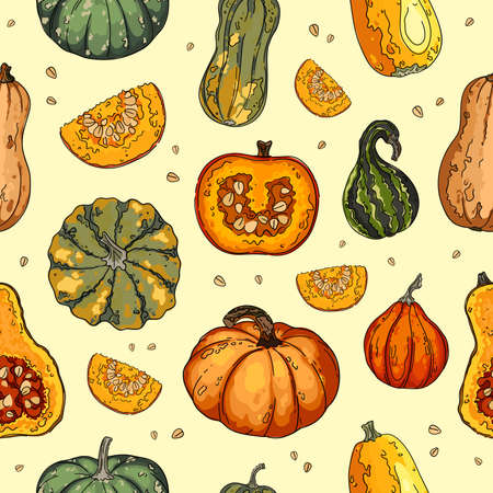 Pumpkin vegetables, gourds and squashes pattern. Autumn texture for thanksgiving, harvest and halloween. Vector Illustration
