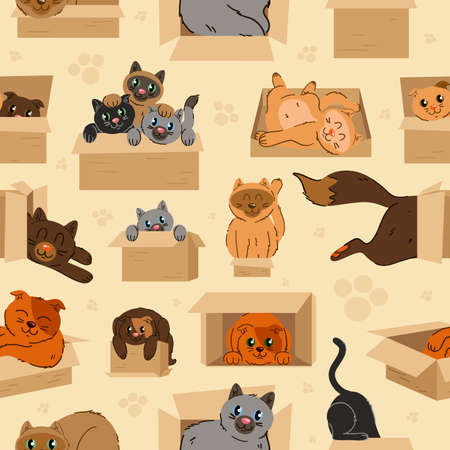 Cats in cardboard transportation boxes cartoon seamless pattern. Graphic resource about cat and paper box for graphic, content, banner, sticker label and greeting card. Иллюстрация
