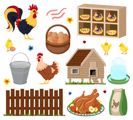 Poultry farm elements set with owner birds barn coop roost chicken meat and eggs. Chicken coop with many chicks Vector Illustratie
