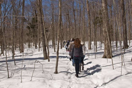 People hiking on snow covered path through forest on sunny winter day
