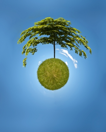 Digitally manipulated photograph of tree on a grassy lawn  Large tree grows out of the grassy sphere and branches arch around top half of the sphere  Small white clouds in background floating in a blue sky