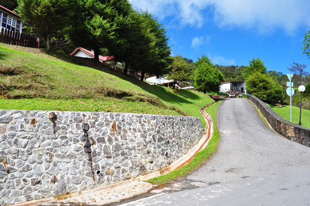 Village Forest Road photo
