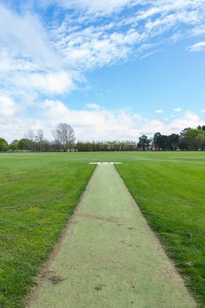 greenery: Greenery grass field
