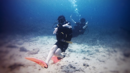divers: Scuba divers