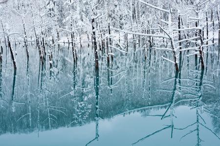Winter Lake, biei-Cho