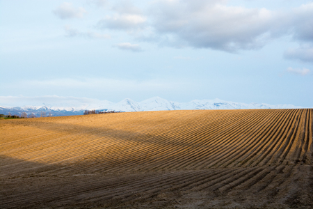 Spring field with snow