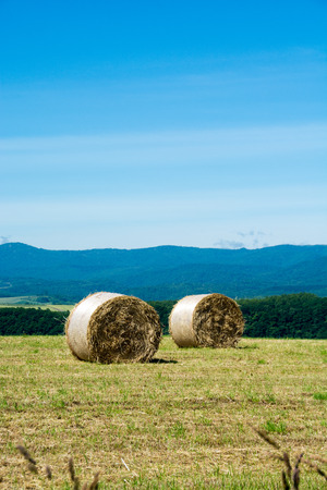 hay and blue sky 写真素材
