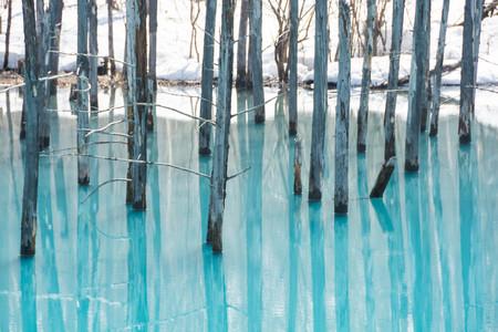 Snow melt the blue pond, biei-Cho