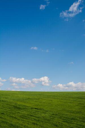 Prado verde y cielo azul