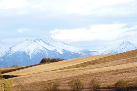 Spring field and mountains with remaining snow