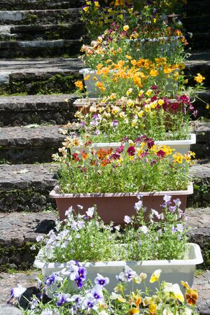 Lined flower box