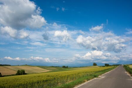 Agricultural road in upland area with the blue sky