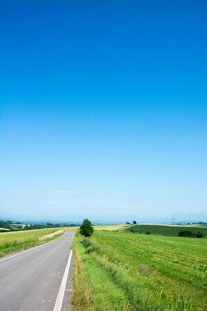Road through summer green upland