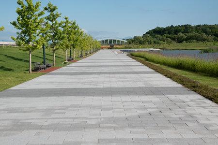 Park promenade in early summer