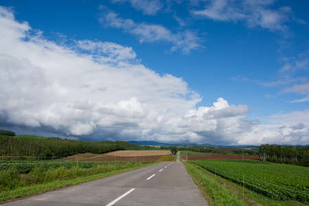 Road through the upland with the blue sky