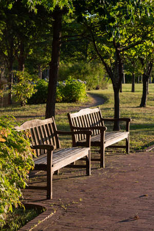 Park benches at dusk in summer Stock fotó