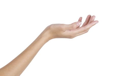 Woman's hand holding something empty,back side, isolated on white background.