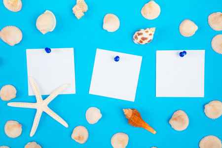 frame of seashell with to do list, the paper noted and blue push pin on colorful background, Sea flat lay tropical, and aloha  travel concept.