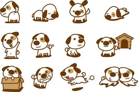 Cute white dog variation